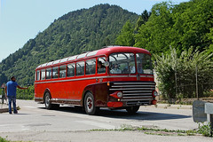 """FIAT 306 Dalla Via """" Collection Politi """" (marvin 345) Tags: fiat306dallavia fiat trentino aite cavallipistoniemozioniricordi italy italia bus autobus pullman corriera fiat306"""