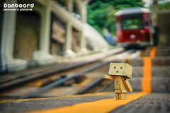(janetcmt's pictures) Tags: danboard sigma30mmf14dcdn bokeh