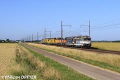 BB67231 sur TM Vénissieux Perrigny vers Chamblanc (philippedreyer1) Tags: