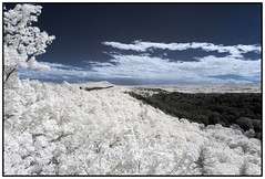 2017 - Infrared - Pocumtuck Range, Massachusetts (The-Kurt) Tags: infrared landscape ir mountains mountain outdoors summer sky appalachia appalachian massachusetts scenic view greenfield franklin county pocumtuck range canon 20d 1018mm