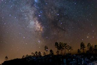 Vía Láctea Moya 50mm f1.4