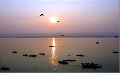 Purple Morning Mists ....... (Mary Faith.) Tags: river ganges varanasi sunrise boats hold birds india
