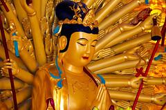 A DI DA PHAT QUAN THE AM BO TAT DAI THE CHI BO TAT GUANYIN KWANYIN BUDDHA 9501 (ketnoivietnam) Tags: amazing affectionate amitabha architecture art asia avalokitesvara awesome bangkok beautifull beijing palace bhutan bodhisattva bouddha buddha tooth relic temple buddhism buddhist china chinatown chua excellent fantastic flickraward gold golden guanyin hainan hdr history hong kong 观音 佛 仏 부처님