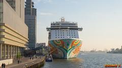 Norwegian Getaway, Rotterdam, Hollande - 2348 (rivai56) Tags: rotterdam hollande paysbas sonyphotographing zuidholland norwegian getaway
