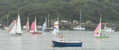 Yachts on the River Fowey (david.bragg) Tags: yachts boats fowey cornwall
