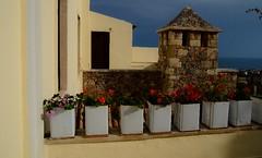 Museum of Rural Life Piskopiano Village - Λαογραφικό Μουσείο Παρλαμά Πισκοπιανό (9)