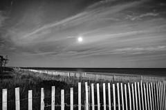 Two Fence Moonrise (uselessbay) Tags: 2016 charlestown nikon nikond700 rhodeisland uselessbayphotography williamtalley blackandwhite d700 digital eclipse fullframe landscapes nightphotography sky sun sunset uselessbay