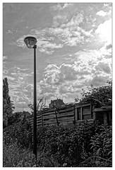 L'éclairage public (Jean-Marie Lison) Tags: eos80d bruxelles anderlecht laroue sentier clôture réverbère friche noiretblanc monochrome nb