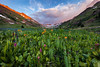 Weminuche Wilderness Sunset (Ryan C Wright) Tags: red americanbasin wildflowers lakecity colorado sunset indianpaintbrush lupine redelephantsear southwestcolorado sanjuanmountains weminuchewilderness wallart homedecor officedecor fineartprints