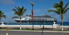 Liberty of the Seas (Jeffrey Neihart) Tags: jeffreyneihart nikon nikkor nikond5100 nikon1855mm ship caribbean royalcaribbean libertyoftheseas ryndam hollandamerica palmtrees