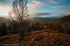 Loch Ard Forest (mscelnik) Tags: aberfoyle forest hillwalking kinlochard ben lomon