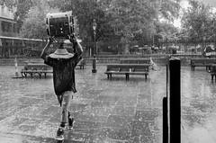 Raindrops Keep Fallin' on my Drum (Billy Woolfolk) Tags: ricoh ricohgr apsc rain jacksonsquare neworleans louisiana streetphotography jazz リコー リコーgr ニューオーリンズ ルイジアナ州 ジャクソン・スクエアー 雨 ジャッズ ミラーレス mirrorless