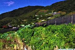 Janice's Villa Night View and Vege View (MitchellC1014) Tags: mtkinabalu nightview janicesvilla canoneos newbie star