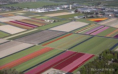 Holland from the air (Rolandito.) Tags: europa europe holland netherlands niederlande nederland paysbas aerial flower field fields tulip tulips blumenfelder