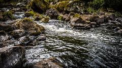 _61A4217.jpg (fotolasse) Tags: stenfors natur nature sweden sverige småland kronoberg å vatten water river bäck sten grönt green canon hdr 16x9 tingsryd
