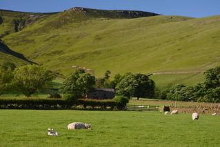 Pastoral & Peaceful, Peak District National Park, Derbyshire, England.