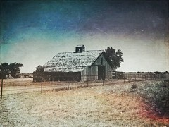 """""""West Texas History"""" An old barn sits in retirement on a ranch outside Lubbock Texas, reminding one of the rich history of ranching and farming in Texas. Architecture Built Structure Abandoned Sky Landscape Rural Scene Ranch Barn Oldbarn West Texas Texas (bradhodges09) Tags: architecture builtstructure abandoned sky landscape ruralscene ranch barn oldbarn westtexas texas agriculture historicalbuilding"""
