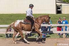 JBC_8977.jpg (Jim Babbage) Tags: krahc annualshow appaloosa horses bethany