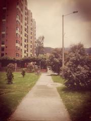 IMG_20170326_120947 (josespektrumphotography) Tags: calle hawueip7 camino arbol dia edificio cielo color josespektrumphotography