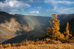 Pass Katu-Yaryk (Влад Соколовский) Tags: алтай россия перевалкатуярык радуга осень altai altay autumn rainbow sky passkatuyaryk larch