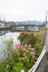 20170630-DS7_2641.jpg (d3_plus) Tags: 北陸 田舎 d700 cloudy 日常 walking rural aiafzoomnikkor28105mmf3545d fishingport garden 景色 sky park 風景 富山 streetphoto nikon flower 漁港 海 散歩 nikond700 touring scenery ズーム toyama 28105mmf3545 ストリート 雨 aiafnikkor28105mmf3545d 屋外 nature sea 路上 自然 rainy roadstation japan 曇り 花 plant dailyphoto 28105mmf3545af nikkor ツーリング ドライブ street 道の駅 281053545 28105 路上写真 28105mmf3545d 植物 countryside 車 ニコン zoomlense hokuriku ウォーキング daily 公園 thesedays rain drive 空 日本 bloom outdoor 28105mm car