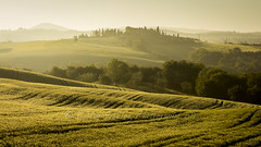 Dawn over Cornfields, Val d'Orcia (pixellesley) Tags: val dorcia italy farmland fields cornfields spring mist dawn daybreak manicured farmhouse woodland trees light tranquil still peaceful landscape lesleygooding