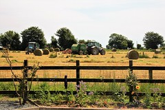 Make hay while the sun shines (JulieK (thanks for 8 million views)) Tags: fence hff 117picturesin2017 canoneos100d field tractor trees garden baling silage wexford ireland irish