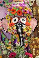 Snana Yatra 2017 - ISKCON-London Radha-Krishna Temple, Soho Street - 04/06/2017 - IMG_3041 (DavidC Photography 2) Tags: 10 soho street london w1d 3dl iskconlondon radhakrishna radha krishna temple hare harekrishna krsna mandir england uk iskcon internationalsocietyforkrishnaconsciousness international society for consciousness snana yatra abhishek bathe deity deities srisri sri lord jagannath baladeva subhadra 4 4th june summer 2017