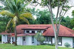 Singapore colonial black and white house (Tatyana Kildisheva) Tags: asia singapore singapura southeastasia adampark blackandwhite colonial colonialheritage conservationhome house азия сингапур юговосточнаяазия dsc4197