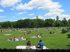 Sunday Colours - New York Beach (Pushapoze (nmp)) Tags: newyorkcity centralpark greatlawn sunbathing skyline grass herbe lagrandepelouse