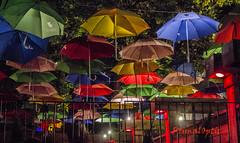 Under My Many Umbrellas (PrimalOptic) Tags: primaloptic umbrella parapluie pluie rain resto night nuit 1957 longueuil bar drinks relax colors