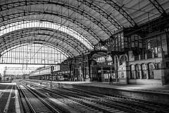 Station Haarlem Centraal (Ramireziblog) Tags: station haarlem centraal trein train rails blackandwhite zwartwit canon 6d arches bogen