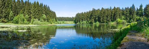 Unterer Flambacher Teich