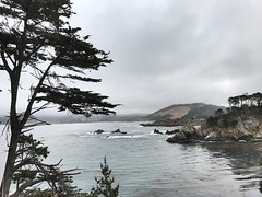 One beautiful morning by the Pacific!! #PointLobos (ipremm) Tags: pointlobos