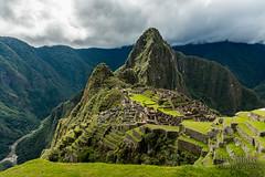 Machu Picchu -_DSC0561
