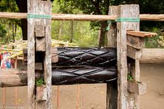 IMG_3627 (caminantetravels) Tags: darien embera playamuerto