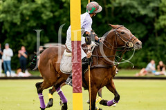 © 2017 Photographs by Robert Piper- All Rights Reserved 691 _ (Ham Polo Club) Tags: jacaranda challengematch vendetta 2017the london polo club tw107ah england gbr