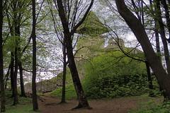 Abords du château Nevytsky (8pl) Tags: château arbres feuilles vert forêt printemps ukraine chemins ruine muraille tour luminosité beauté