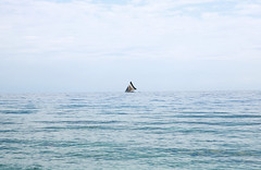 LC3A7034 (Help One Now) Tags: yahveshamma 2k17 helponenow haiti kids childern landscape oceanscape beach