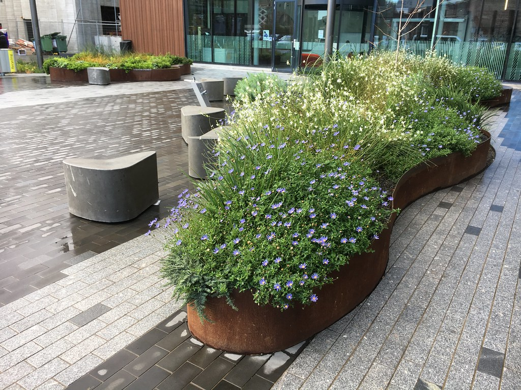 The world 39 s newest photos of architecture and rebuild for Landscape garden design christchurch