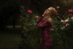 La princesa del edén (Jose Cantorna) Tags: retrato portrait chica girl modelo rosas flores flowers nikon d610