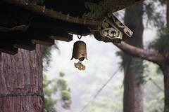 IMG_2605 (normafincher) Tags: japan nikko nikkonationalpark