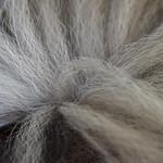Shizandras Tail thumbnail