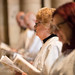 """Ordination of Priests 2017 • <a style=""""font-size:0.8em;"""" href=""""http://www.flickr.com/photos/23896953@N07/35284785430/"""" target=""""_blank"""">View on Flickr</a>"""