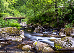 Watersmeet (ihoskins57) Tags: devon eastlynriver ©nigelhoskinsphotography watersmeet trees river northdevondistrict england unitedkingdom gb landscape