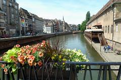 along the Marne-Rhin Canal (tcd123usa) Tags: alsacefrance leicadlux4 bargetrip windowbox
