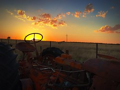"""""""Steering The Sun"""" A West Texas sunset captured through the steering wheel of an abondoned tractor on a farm in New Deal, Texas. Sunset Orange Color Sky Abandoned Cloud - Sky Scenics Landscape Outdoors Dramatic Sky Rural Scene Clouds Texas Landscape Agric (bradhodges09) Tags: sunset orangecolor sky abandoned cloudsky scenics landscape outdoors dramaticsky ruralscene clouds texaslandscape agriculture texas westtexas sunsetcollection silhouettes tractor"""