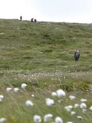 wait (Brian Cairns) Tags: saintmonicasramblers criffel dumfries stoopidchips brianbcairns