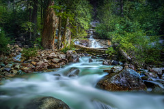 The tumbling Shannon (Photography by Julia Martin) Tags: photographybyjuliamartin theshannonfalls squamish britishcolumbia canada longexposure 45seconds waterfall slowwater