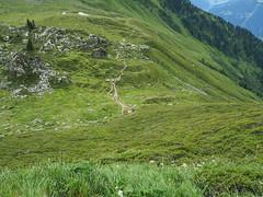 Week 23 Progress (CliveOM-D E-M10) Tags: zillertal austria tyrol mountains